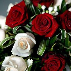 Brautstrauß aus weissen und roten Rosen