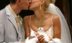 Sich küssendes Brautpaar mit Hochzeitstauben in den Händen.